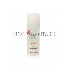 Точечный гель / Holy Land A-Nox Spot Drying Gel 20ml
